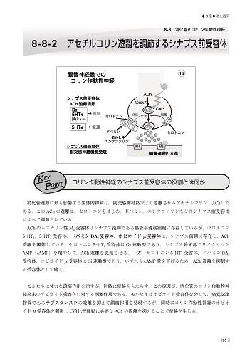 Web版 Hybrid Book 動画マスター機能形態学 3