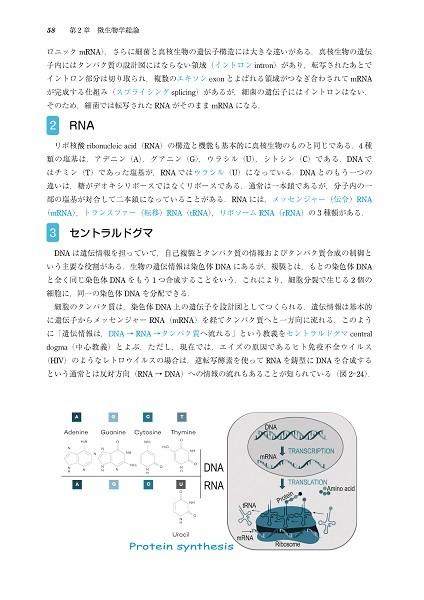 ポイントがわかる薬科微生物学 第4版 1